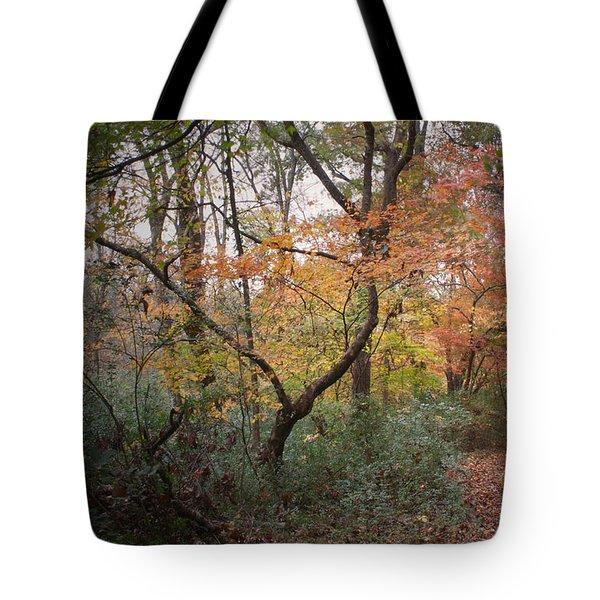Walk Of Change Tote Bag by David Troxel