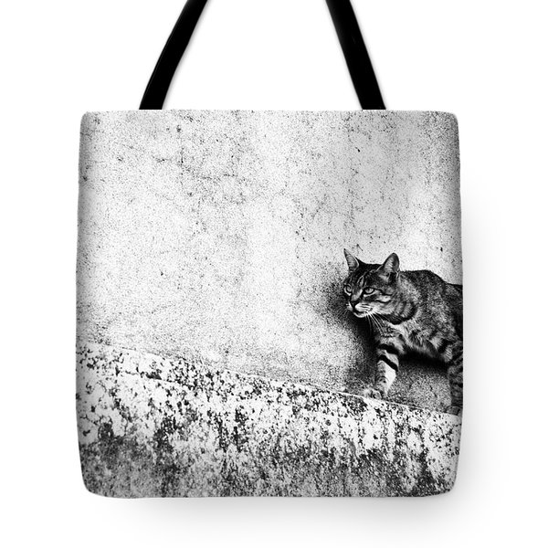 Tote Bag featuring the photograph Walking On The Wall by Laura Melis