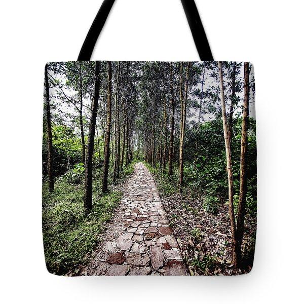 Stone Path Tote Bag by Skip Nall