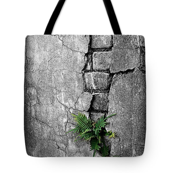 Wall Ferns Tote Bag by Perry Webster
