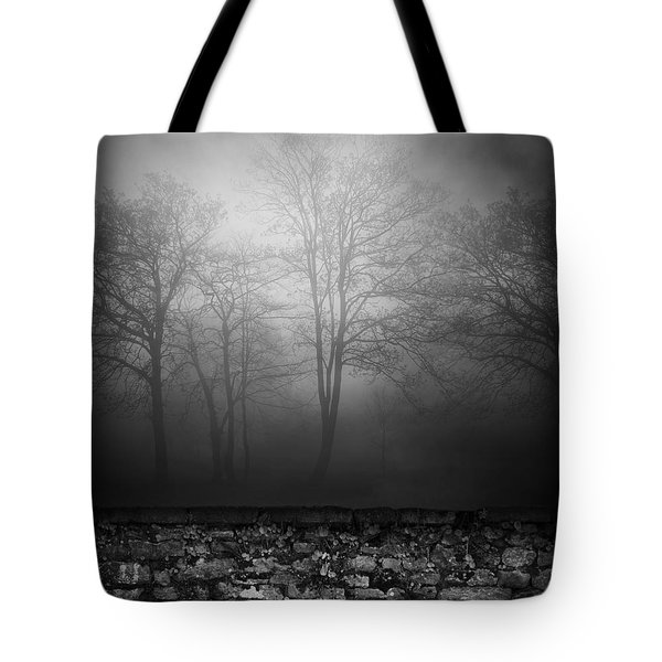 Wall Of Sisters  Tote Bag by Empty Wall
