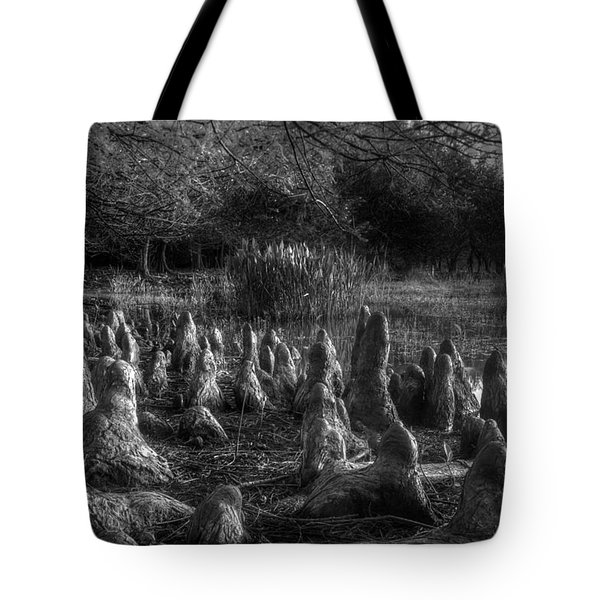 Walrus Beach Tote Bag by Debra and Dave Vanderlaan