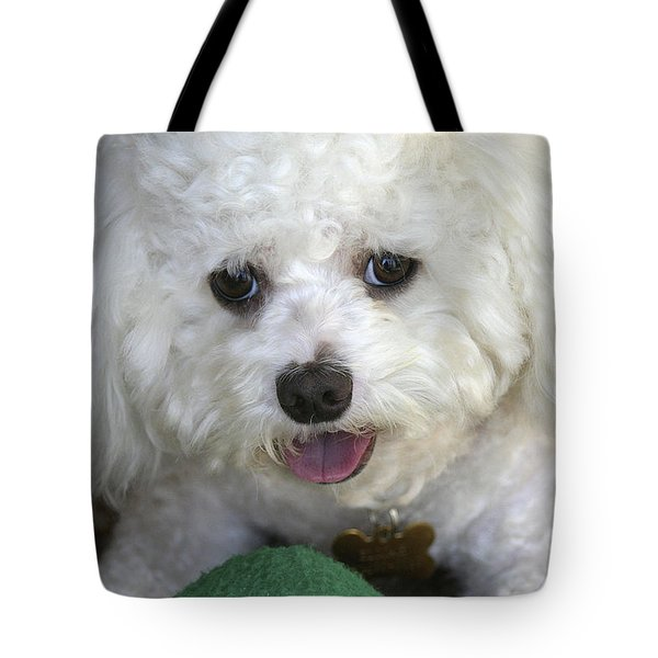 Wanna Play Ball? Tote Bag
