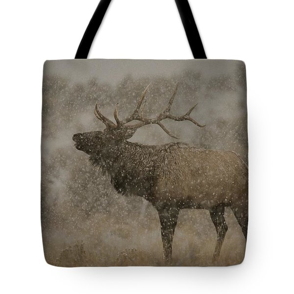 Wapiti, Or Elk, Male Amidst Falling Tote Bag