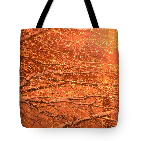 Warm Icy Reflections Tote Bag by Sandi OReilly