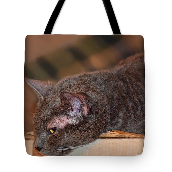 Warm Kitty Iv Tote Bag by Debbie Portwood