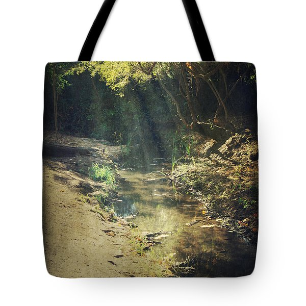 Warm My Soul Tote Bag by Laurie Search
