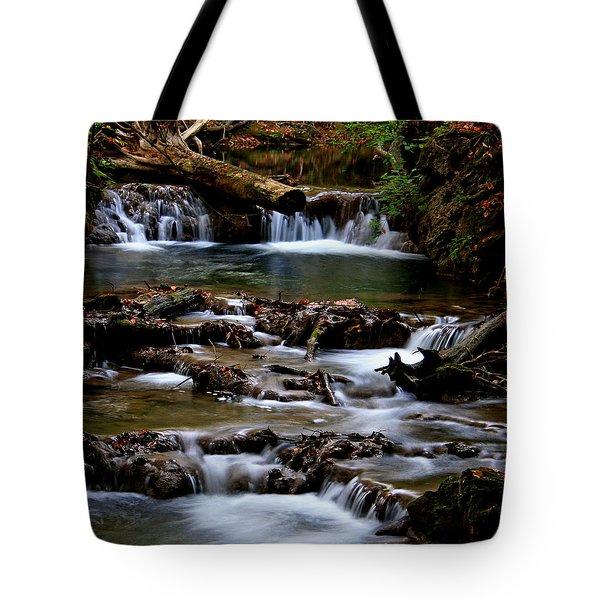 Warm Springs Tote Bag by Karen Harrison