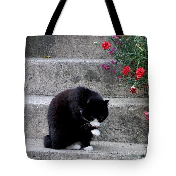 Washing Up Tote Bag by Lainie Wrightson