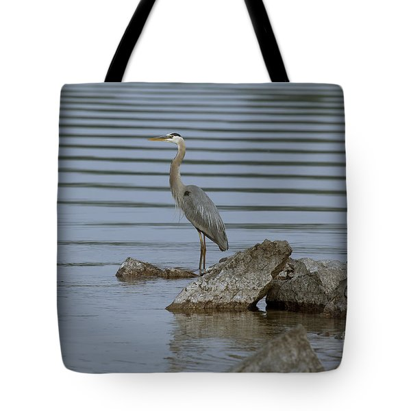 Watchful Tote Bag by Eunice Gibb