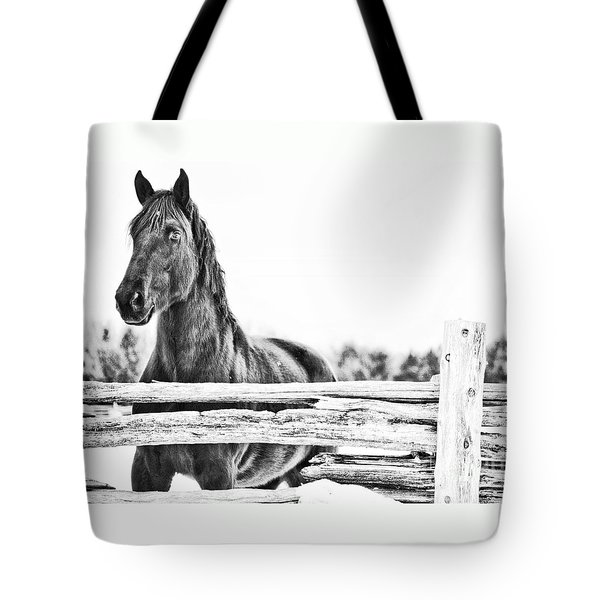 Tote Bag featuring the photograph Watching Close by Traci Cottingham