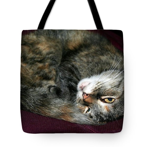 Tote Bag featuring the photograph Watching On The Sly by Laurel Talabere