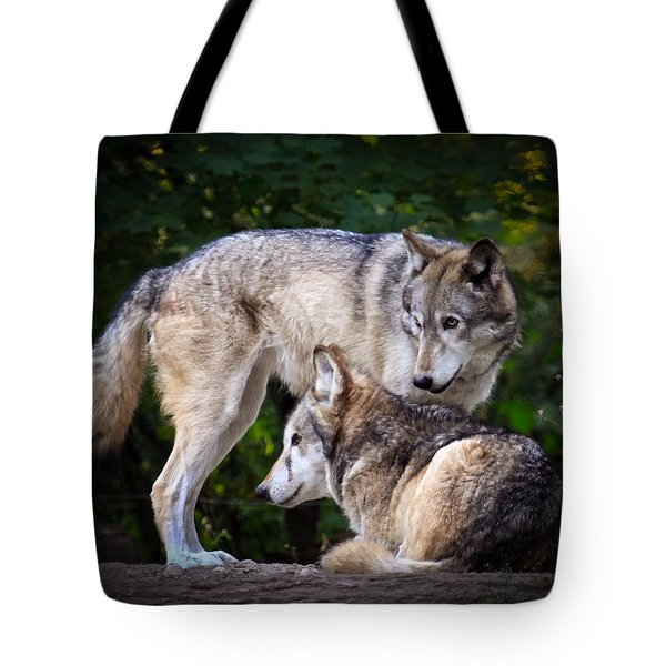 Tote Bag featuring the photograph Watching Over by Steve McKinzie