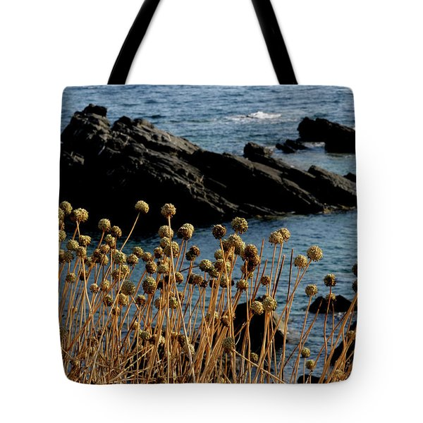 Tote Bag featuring the photograph Watching The Sea 1 by Pedro Cardona