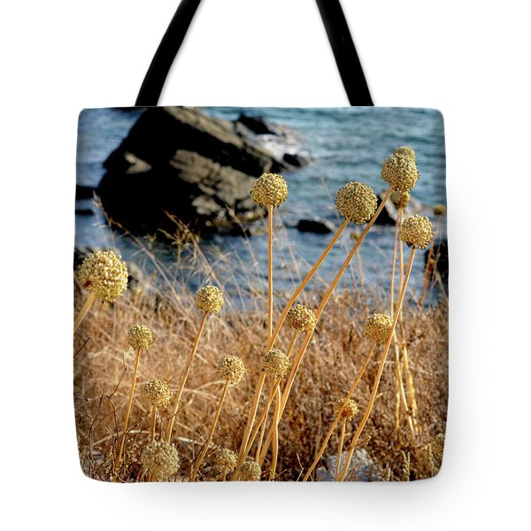 Tote Bag featuring the photograph Watching The Sea 2 by Pedro Cardona