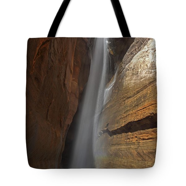 Water Canyon Tote Bag by Susan Rovira