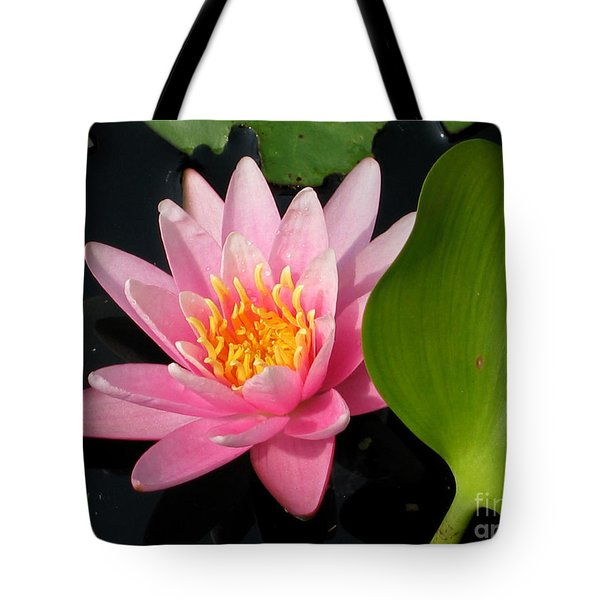 Water Lily 2 Tote Bag by Eva Kaufman