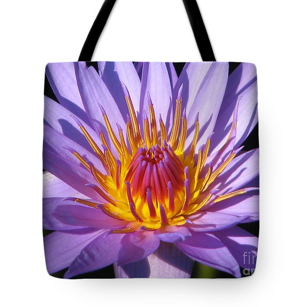 Water Lily 6 Tote Bag by Eva Kaufman