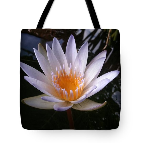 Tote Bag featuring the photograph Water Lily by Carol Sweetwood