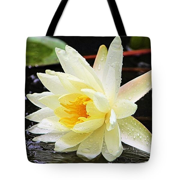 Water Lily In White Tote Bag by Elizabeth Budd