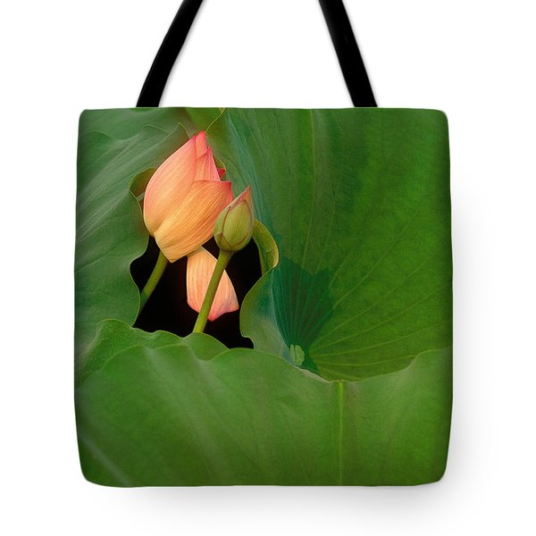 Water Lily Tote Bag by Mark Greenberg