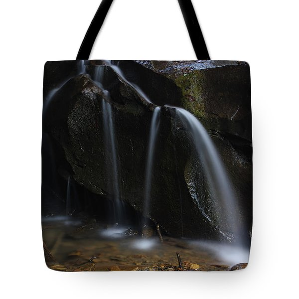 Waterfall On Emory Gap Branch Tote Bag by Daniel Reed