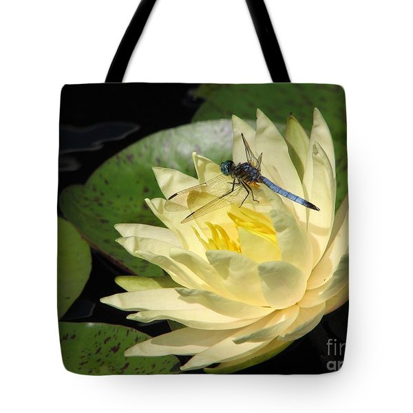 Waterlily With Dragonfly Tote Bag by Eva Kaufman