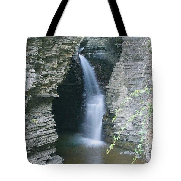 Watkins Glen B   Tote Bag
