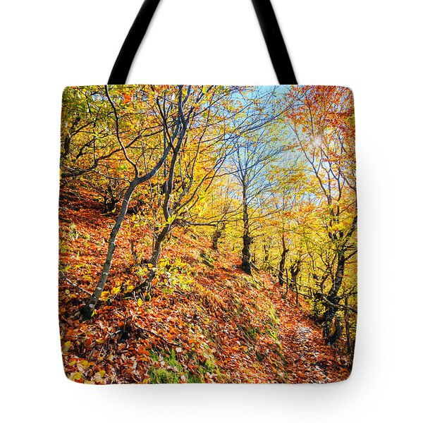 Way To The Chapel Tote Bag by Evgeni Dinev