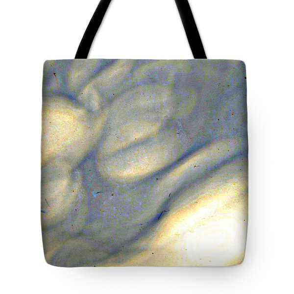 weather report II Tote Bag by Diane montana Jansson