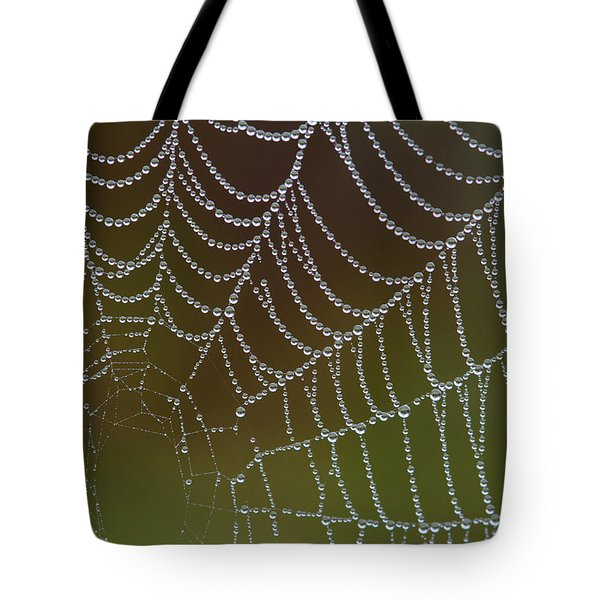 Web With Dew Tote Bag by Daniel Reed