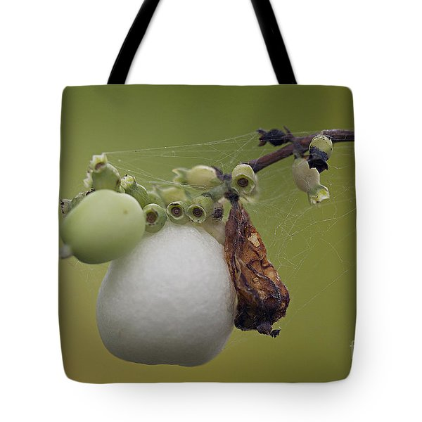 Webbed Berry Tote Bag by Eunice Gibb