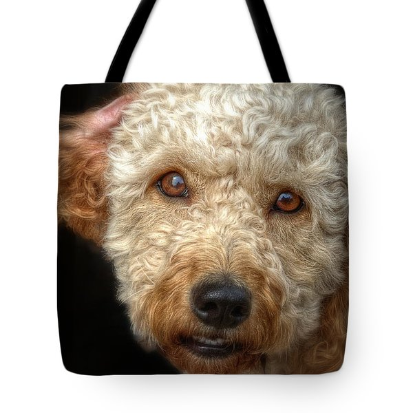 Webster At The Bar Tote Bag