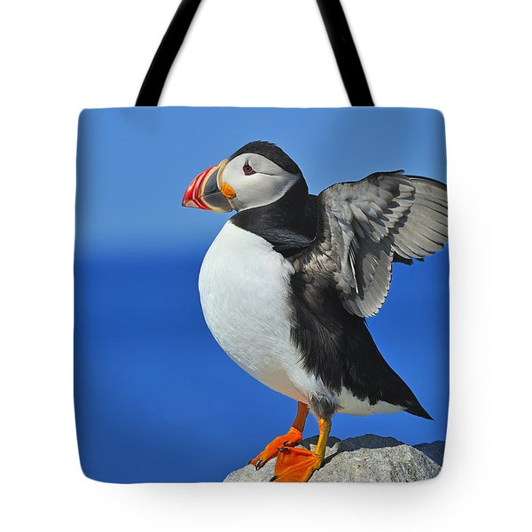 Welcoming The Sunrise Tote Bag by Tony Beck