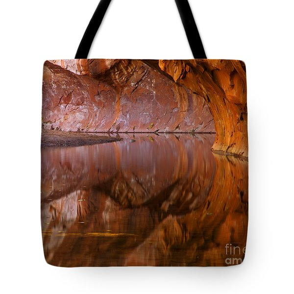 West Fork Illusion Tote Bag by Mike  Dawson