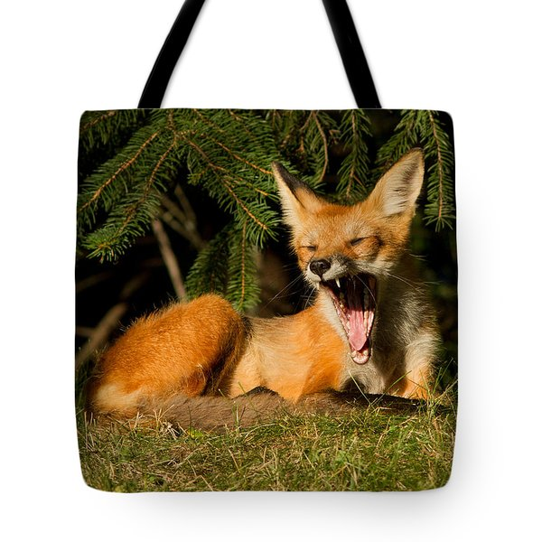 What A Day Tote Bag by Mircea Costina Photography