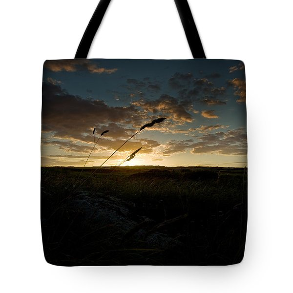 Wheat Fields  Tote Bag