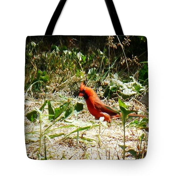 Where Did I Leave My Keys?? Tote Bag by Alys Caviness-Gober