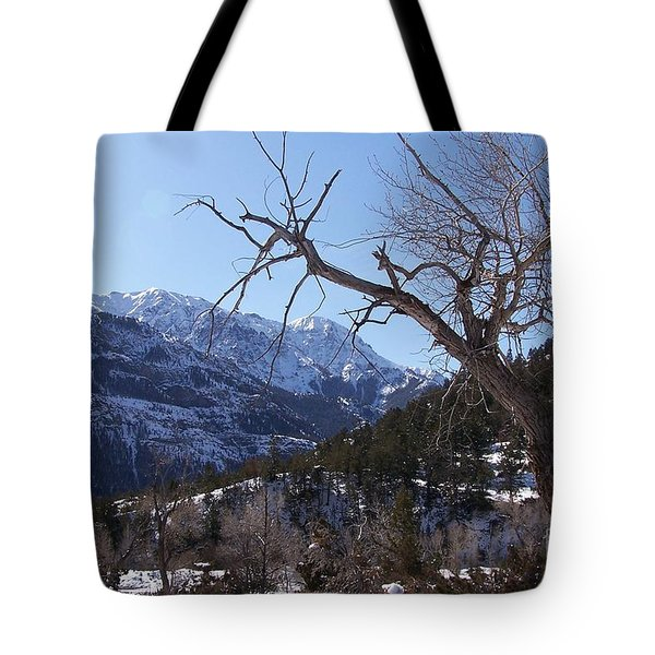 Where Dreams Begin Tote Bag by Dorrene BrownButterfield