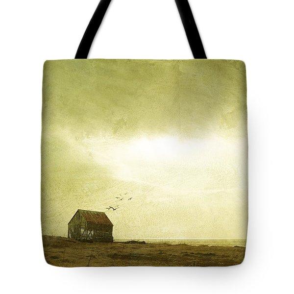 Whimsical Reykjavik Tote Bag