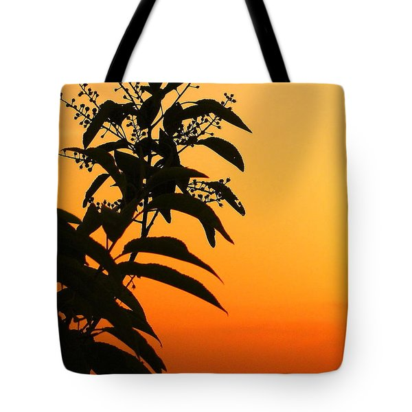 Whipple Hill Tote Bag