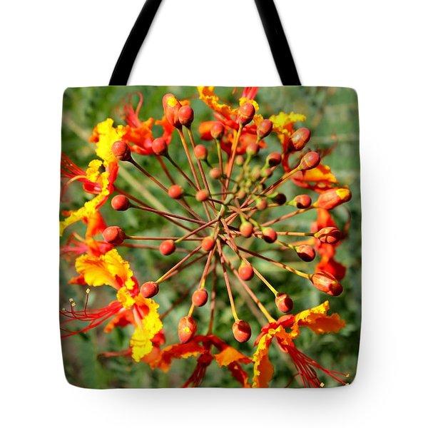 Whirled Paradise Tote Bag
