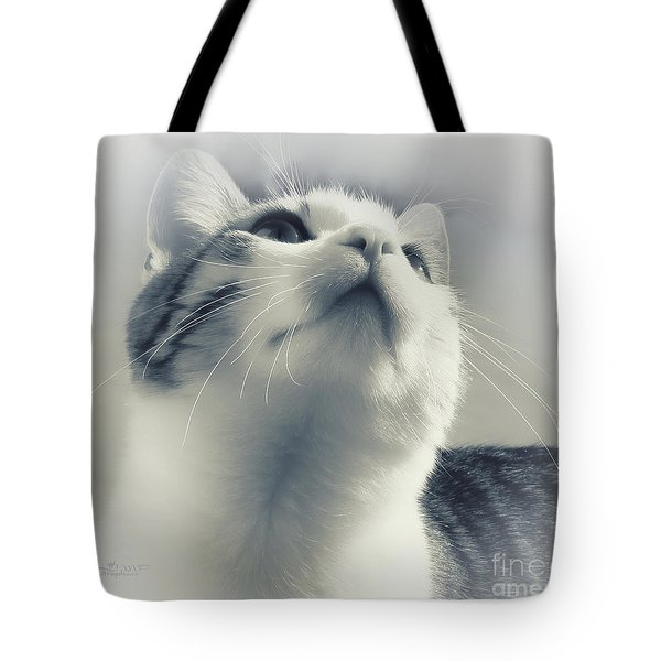 Whiskers Tote Bag by Jutta Maria Pusl