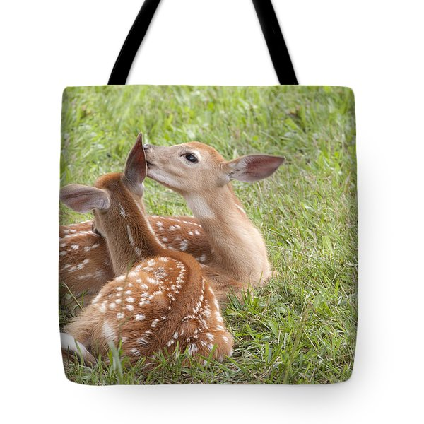 Tote Bag featuring the photograph Whispering Fawns by Jeannette Hunt