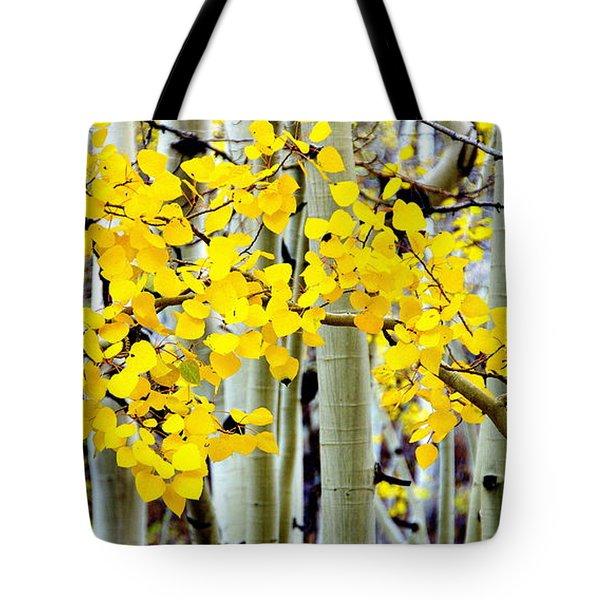 White Aspen Golden Leaves Tote Bag by Jeff Lowe