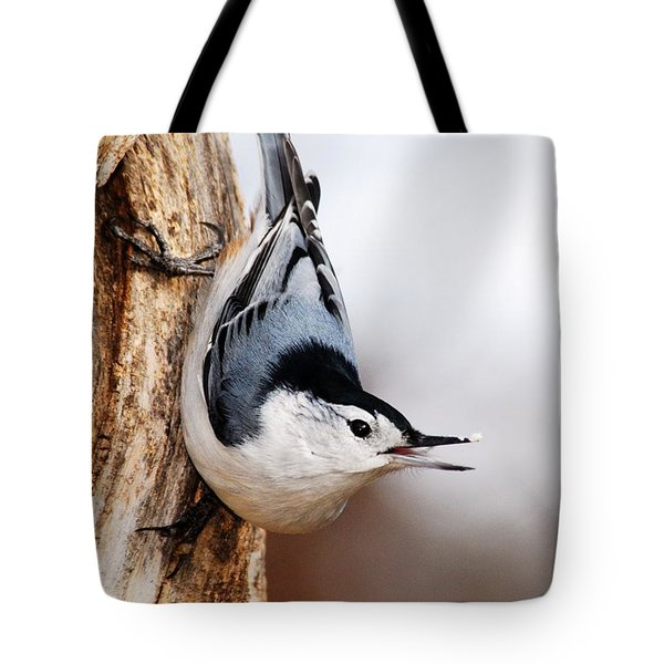 White-breasted Nuthatch 3 Tote Bag by Larry Ricker