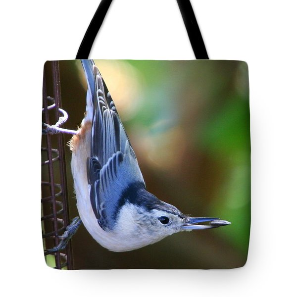 Tote Bag featuring the photograph White-breasted Nuthatch by Laurel Talabere