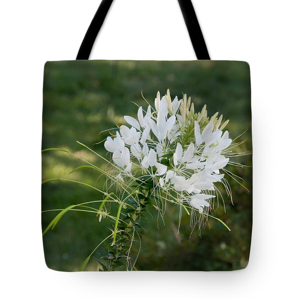 White Cleome Tote Bag by Michael Bessler