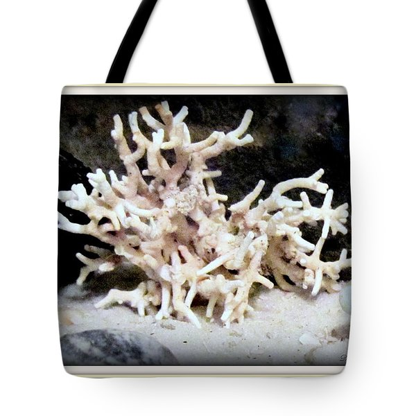 Tote Bag featuring the photograph White Coral  by Danielle  Parent