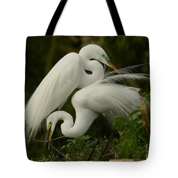 Tote Bag featuring the photograph White Egrets Working Together by Myrna Bradshaw